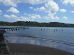 Producers  Bathing Beach