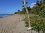 Frenchman's Bay Beach