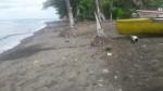 Hope Bay