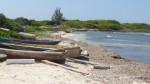 Salt Marsh Fishing Beach