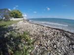 Retreat Beach